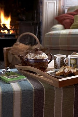 a good book and a cup of tea in front of the fire.. could a cold winter night get any better than this?