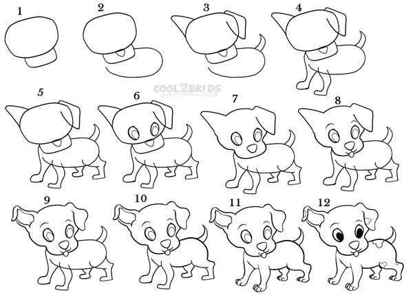 Cute drawings of animals step by step