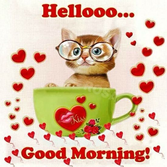 morning friends and family good morning coffee