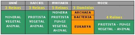 CIENCIAS BIOLOGICAS: CLASIFICACION DE LOS SERES VIVOS