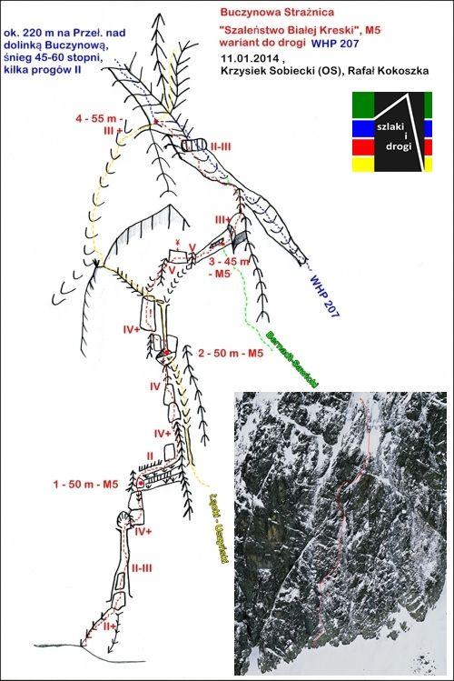 Buczynowa Strażnica, Szaleństwo Białej Kreski, M5