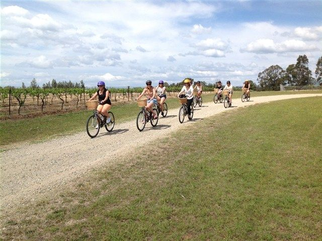 Cycling through vineyards in the Hunter Valley. Or Chauffeur driven in a Limo, Vintage car or by horse & cart - so many choices and amazing experiences www.bespokehunter.com.au can plan & book it for you