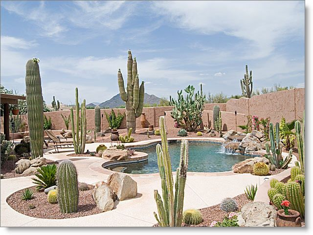 Stunning Backyard Landscaping With Pool, Water Fall And Heated Spa. Black  Mountain Views. Arizona Backyard IdeasDesert ...