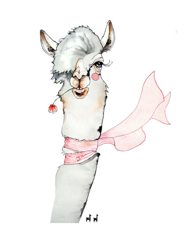 Lama for Amazingy by Sara Ligari #illustration #painting #drawing