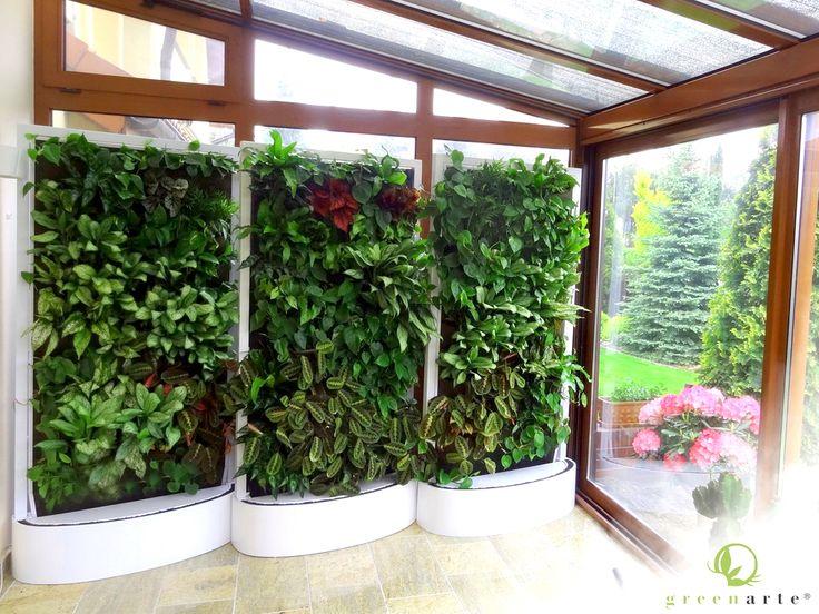 Mobilna zielona ściana w prywatnej oranżerii - Greenarte®
