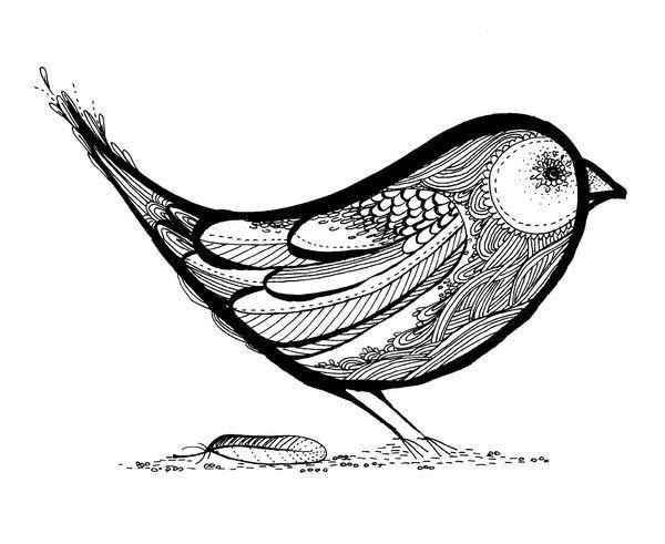 Line Drawing Bird : Sparrow bird line drawing birds and butterflies