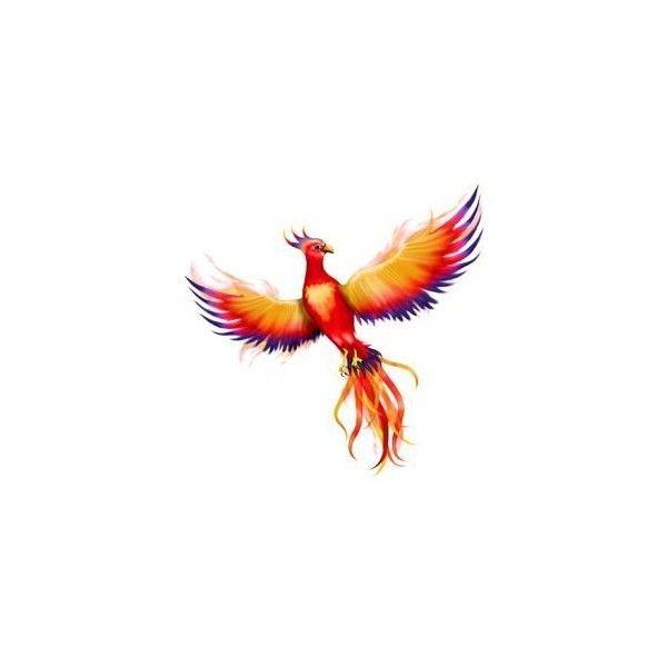 best 25 tribal phoenix tattoo ideas on pinterest phoenix phoenix tattoo arm and phoenix bird. Black Bedroom Furniture Sets. Home Design Ideas