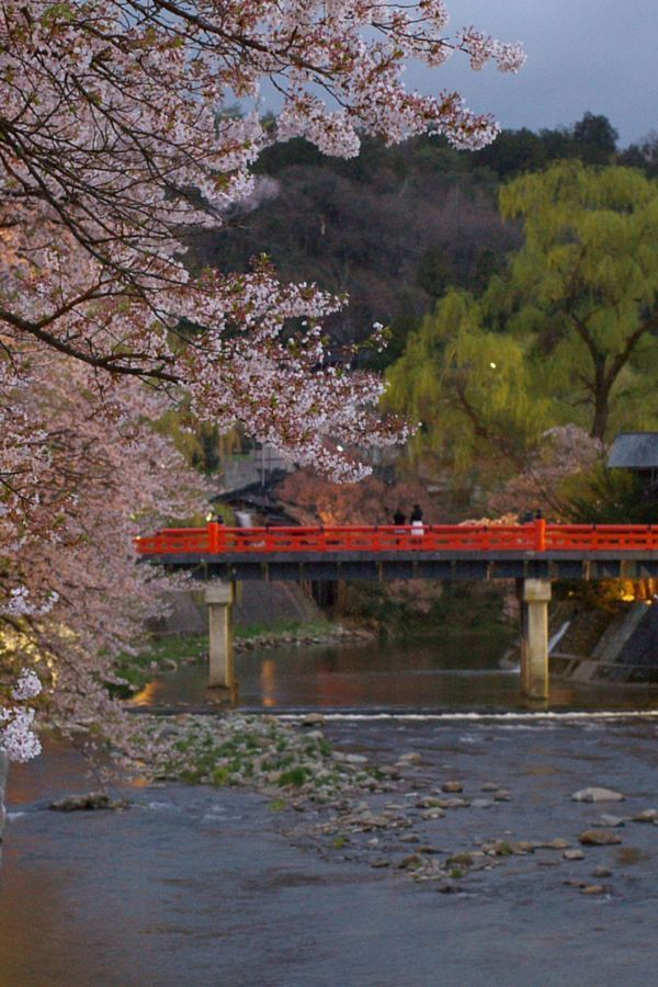 Free Japan travel tips including when & where to go, what to do, food & drink, language & etiquette, phone & Internet, money & budgeting, transport and more!