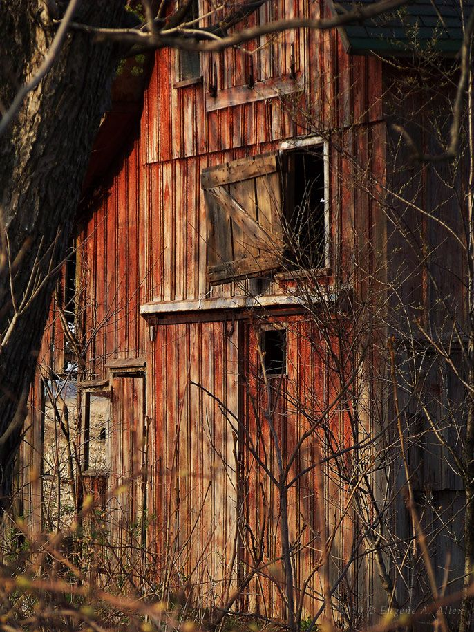 Warm and Weathered Barn