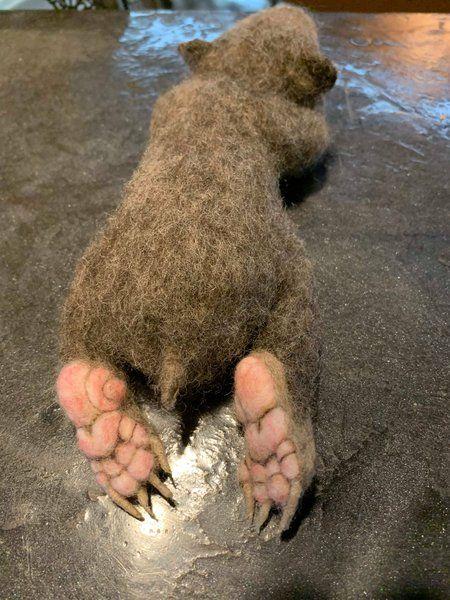 Craigslist Rockford Michigan Pets