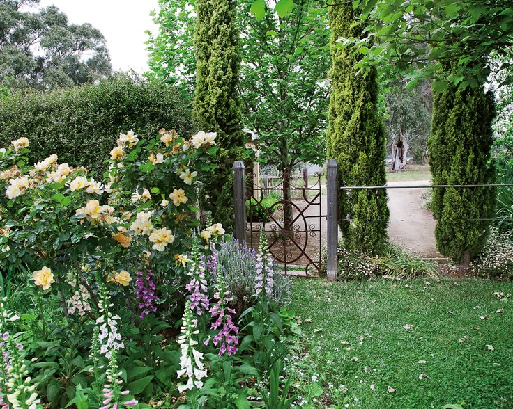 The Heritage Garden, Clare Valley - South Australia by Holly Kerr Forsyth