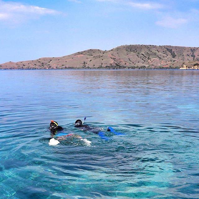 #snorkeling #padarisland #labuanbajo #eastnusatenggara #pesonaindonesia #wonderfullindonesia #igphotomagic #beauty_of_nature_ #uwphotography #uwpics #photooftheday #powershot #instapic #instagood
