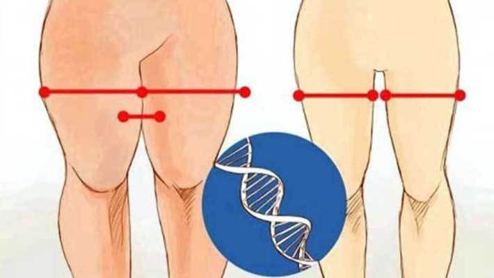 Best 12-Minute Workouts to Slim Your Thigh: Best exercises to get rid of saddle bag thigh at home