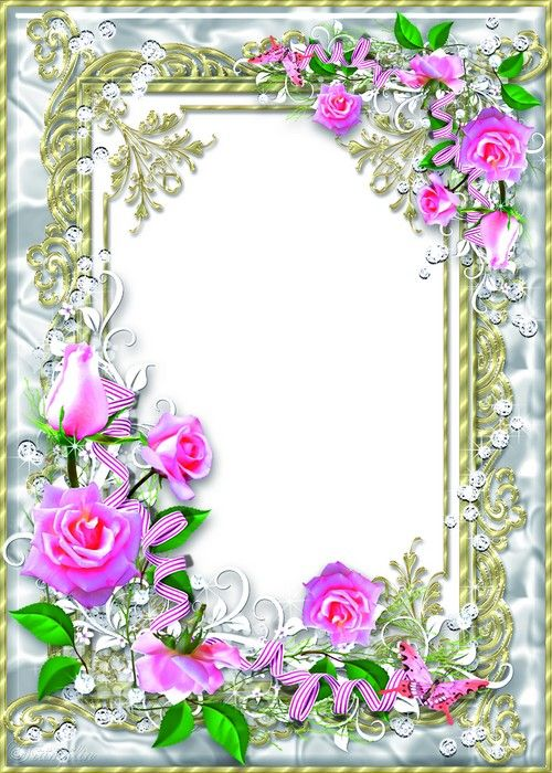 delicate floral frame psd with pink roses