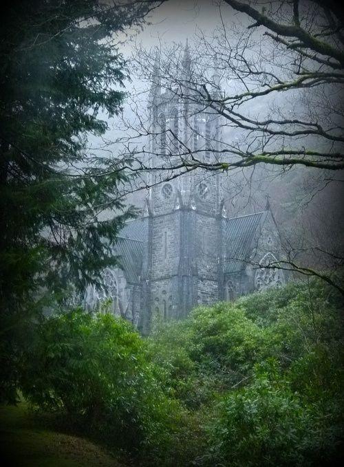 El bosque y el castillo de la Bella Durmiente