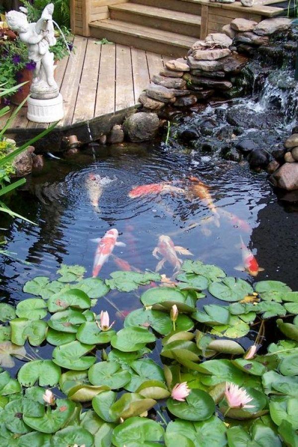 Creative Diy Koi Pond Ideas You Can Create To Complete Your Backyard Koi Pond Designs Design No 13053 K Garden Pond Design Pond Design Fountains Outdoor