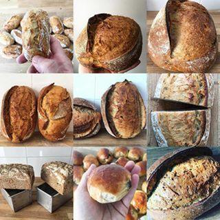 Consejos, ideas, métodos que te ayudarán a dominar tu masa madre y poder hacer pan con ella