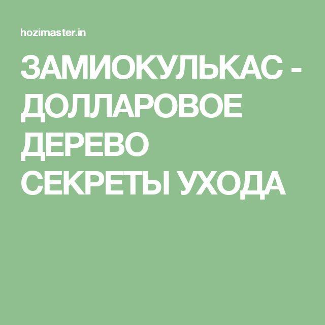 ЗАМИОКУЛЬКАС - ДОЛЛАРОВОЕ ДЕРЕВО СЕКРЕТЫ УХОДА