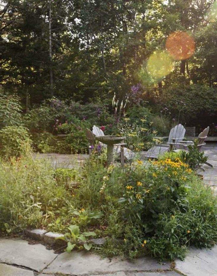untamed messy garden design trends 2016
