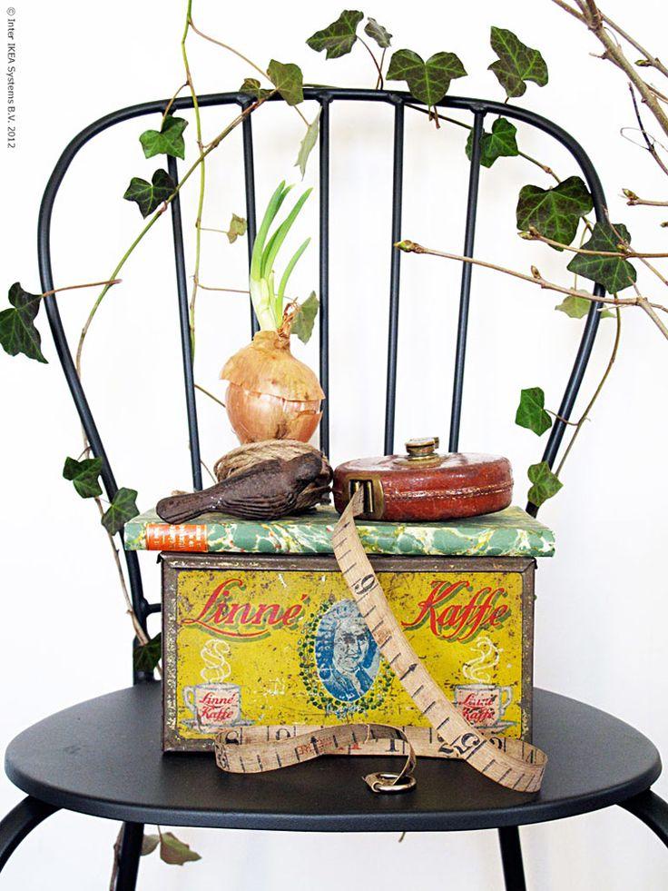 A Chair, A Box And An Onion.