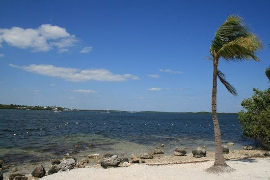 Florida Keys Family Resorts: Find 45,366 traveler reviews, candid photos, and the top ranked Family Resorts in Florida Keys on TripAdvisor.