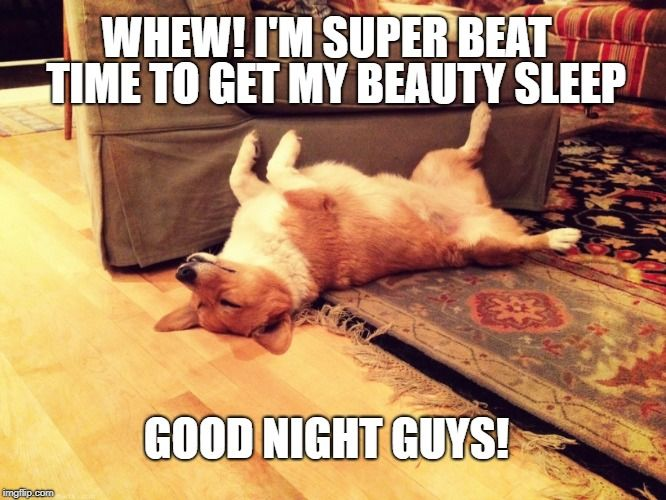 Custom Image Funny Good Night Images Funny Good Night Pictures Good Night Funny