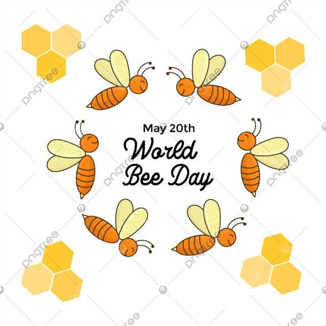 Happy Bee Hand Drawn Design Hand Icons Happy Icons Bee Icons Png And Vector With Transparent Background For Free Download Bee Icon Hand Drawn Design Bee Illustration