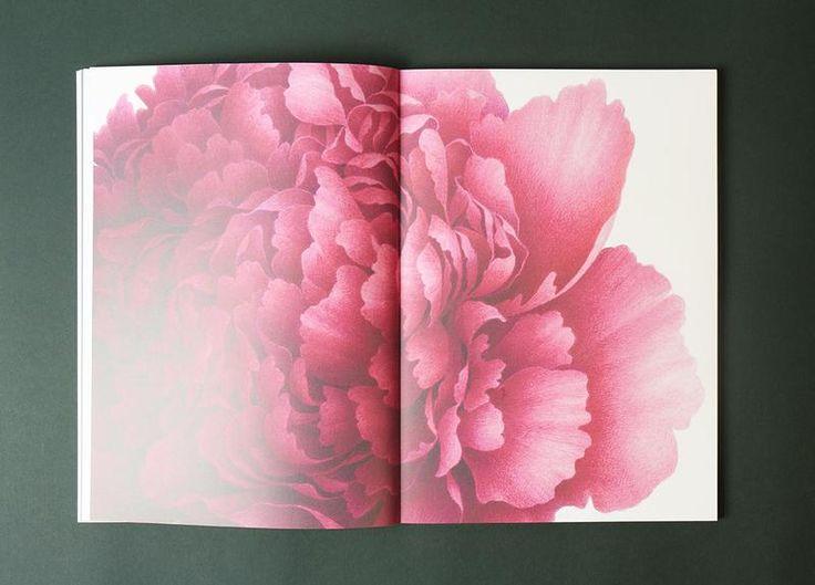 Le Livre D Art Vincent Jeannerot Aquarelles Botaniques Art