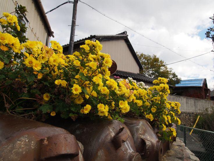 2017.11.19 #愛知県 #常滑市