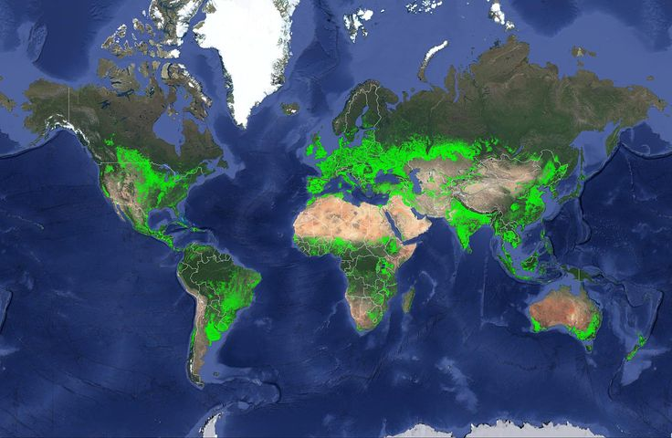 Map of Worldwide Croplands -- A new map was recently released that details croplands worldwide in the highest resolution yet helping to ensure global food and water security in a sustainable way.  Swipe right to see a more detailed view of the US.  The map establishes that there are 1.87 billion hectares of croplands in the world which is 15 to 20 percentor 250 to 350 million hectares (Mha)higher than former assessments. The change is due to more detailed understanding of large areas that…