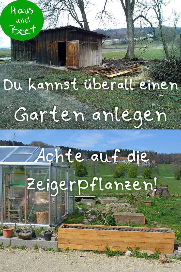Verwildeter Garten? So fängst du an – Haus und Beet – Gemüse anbauen, Brot backen, vegetarische Rezepte, Nachhaltigkeit auch für Anfänger
