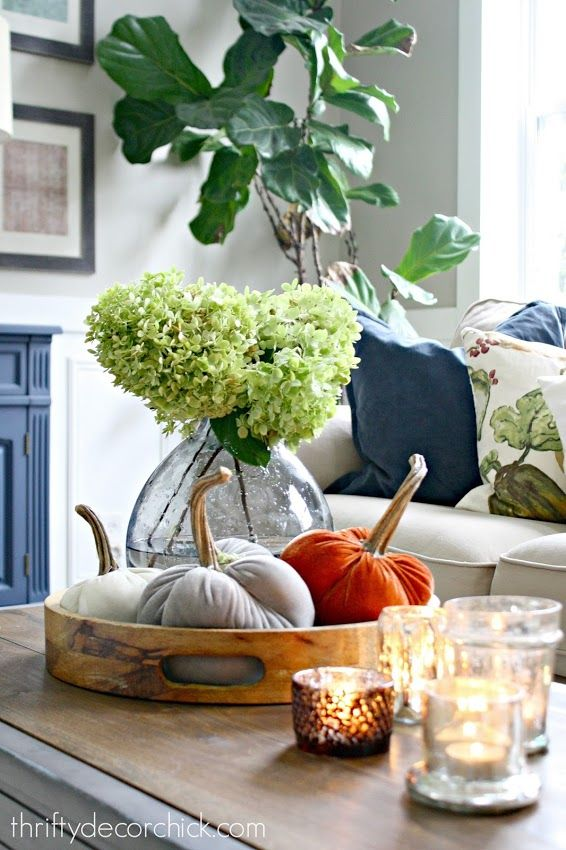 my favorite fall finds so far this year - Decorating For Fall
