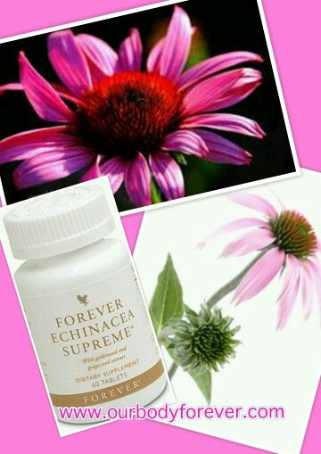 Forever Echinacea Supreme, support the resistance, use at first sign of flu and colds. Order at http://www.healeraloe.flp.com/