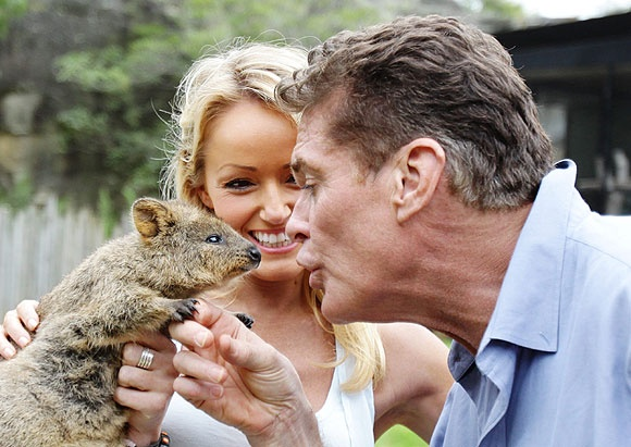 David Hasslehoff kissing a rodent