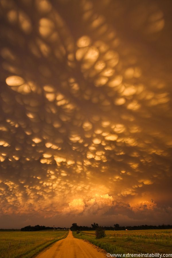 Intense mammatus form over eastern NebraskaLights, Mammatus Clouds, Sky, Eastern Nebraska, Sunsets, Beautiful, Mothers Nature, Places, Storms