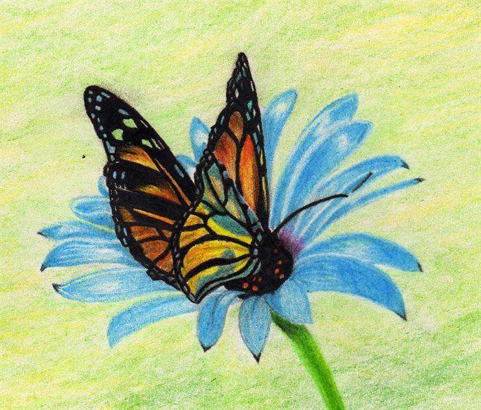 color pencil drawings landscape - Cerca con Google ...