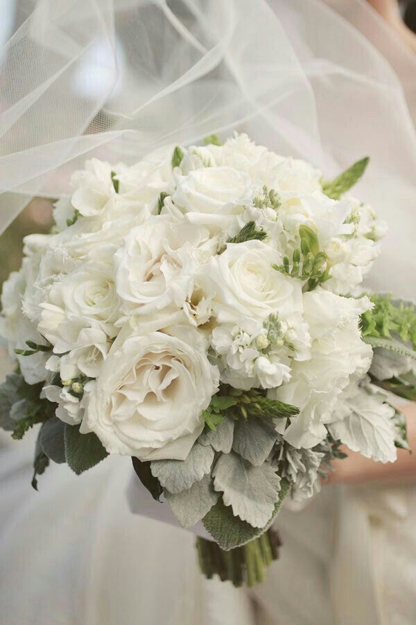 Elegant Wedding Bouquet Comprised Of: White Lisianthus, White Stock, White Freesia, Several Varieties Of White Roses, Star Of Bethlehem Buds, Broad Leaf Dusty Miller + Green Lamb's Ear~~