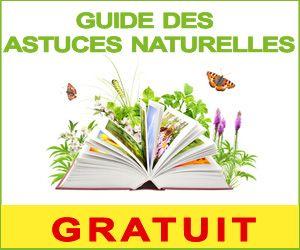 guide gratuit des astuces naturelles: Nettoyer éponge naturelle
