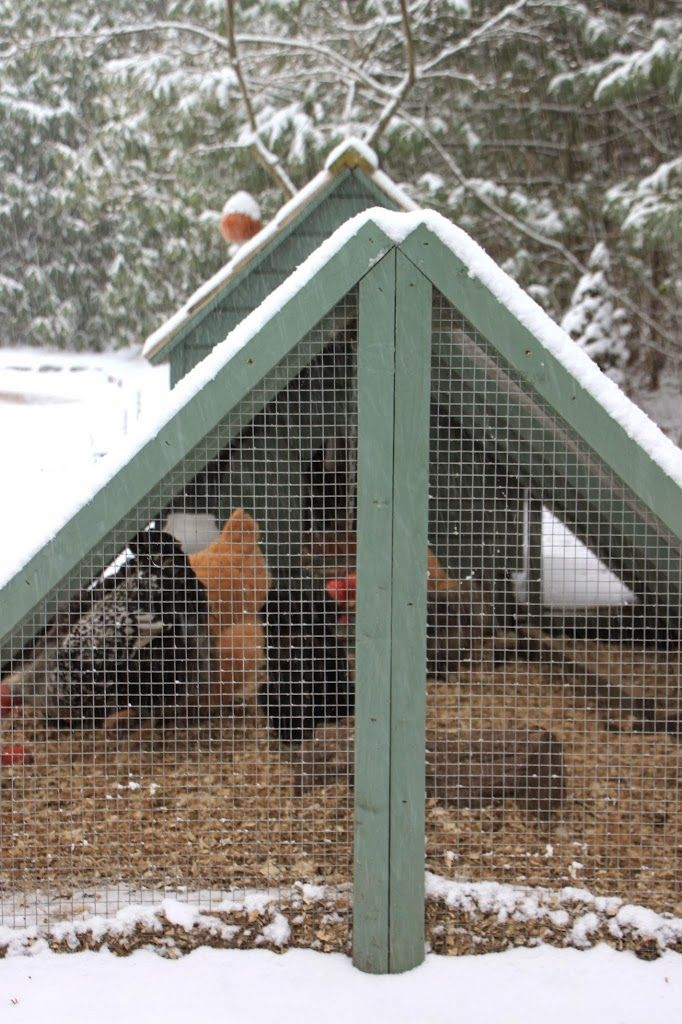 Heating the chicken coop in the winter