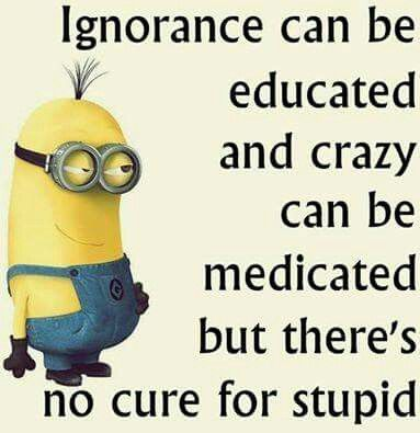 Ignorance can be educated and crazy can be medicated but there's no cure for stupid