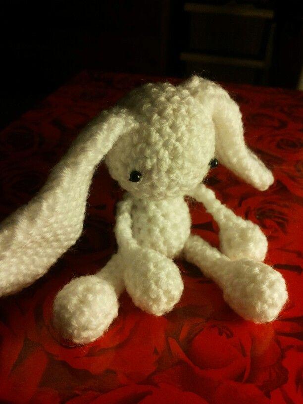 Betta bunny