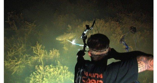 Three Reasons You Should Try Bowfishing