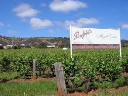 Penfolds, Australia's Most Famous Wine