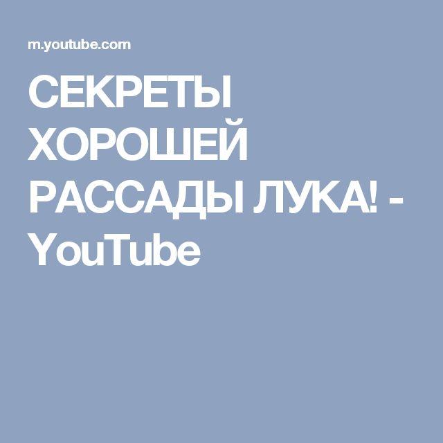 СЕКРЕТЫ ХОРОШЕЙ РАССАДЫ ЛУКА! - YouTube