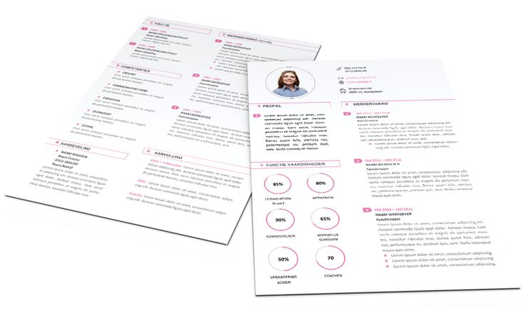 Stijlvol en Fris CV format 2001. Volledig in Microsoft Word voor elke functie zelf aan te passen. www.mooicv.nl