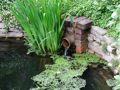 Best 10+ Waterfall design ideas on Pinterest   Garden waterfall ...