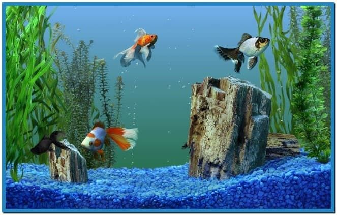 Microsoft Plus Aquarium Screensaver Windows 7 Aquarium Live Wallpaper Aquarium Screensaver Free Animated Wallpaper