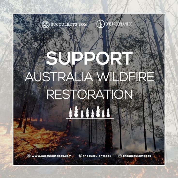 Support Australia longterm restoration 🌳 You may have