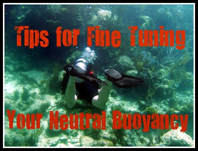 Whether you're a brand new diver or an old hat, fine tuning your neutral buoyancy is a constant process of perfecting your profile. Here are a few tips! http://aquaviews.net/scuba-guides/tips-fine-tuning-neutral-buoyancy/
