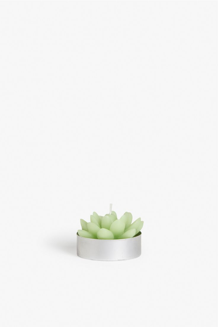 Three tips to keeping your home cosy: Cactus candles in 1,2, and 3 different colours and shapes! Trade in silly prickles for warm candlelight and collect all 3.